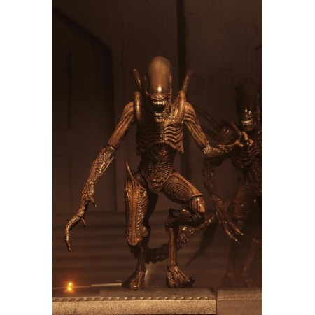 NECA Alien Resurrection Alien Warrior Action Figure