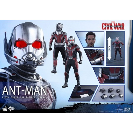 Hot Toys Civil War Ant--man 1/6 Scale Figure
