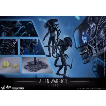 Hot Toys Aliens Alien Warrior 1/6 Scale Figure