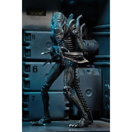 NECA Ultimate Alien Warrior ( Blue Variant )