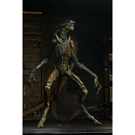 NECA Alien 3 Ultimate Dog Alien