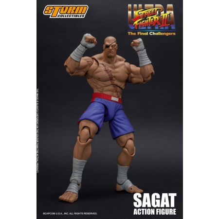 Ultra Street Fighter II The Final Challengers Sagat Storm Collectibles Action Figure