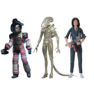 NECA Aliens 40th Anniversary Big Chap Assortment Set of 3