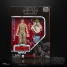 Paquete Star Wars Black Series Deluxe Luke Skywalker y Yoda 2