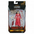 Marvel Legends Shang-Chi and the Legend of the Ten Rings Katy Action Figure