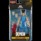 Marvel Legends Age of Apocalypse Legion Action Figure