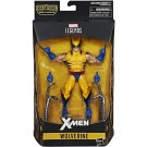 Marvel Legends X-Men Wave 3 Wolverine ( Tiger Stripe )