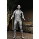 NECA Universal Monsters Ultimate Mummy ( Colour ) Action Figure