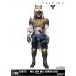 McFarlane Destiny Iron Banner Hunter Million Million Shader Excl